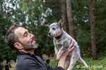 """Man holding """"Lilly"""", his 10 week old Australian Cattledog puppy in Issaquah, Washington, USA."""