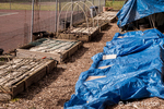 Raised bed vegetable gardens covered by burlap and plastic to prevent the rain from washing away the nutrients in the soil over the winter, in a community garden