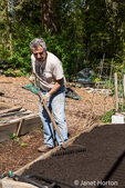 Man smoothing the surface of a raised bed garden that he is preparing for planting