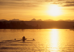 Rowers in a pair row through calm waters of Lake Washington, Seattle, Washington, Pacific Northwest, USA