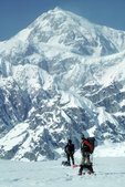 Alaska, Denali, Climbers returning from Denali (Mount McKinley) across the Ruth Amphitheater, Denali National Park, Alaska,