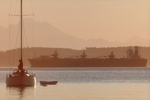 Puget Sound, freighter, sailboat, Mount Baker at dawn, Washington State, USA, Pacific Northwest, Inside Passage, bulk carrier outbound through Admiralty Inlet off Port Townsend,
