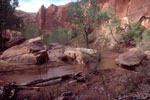 Coyote Gulch, Glen Canyon National Recreation Area, Utah, Southwest USA,