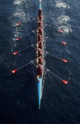 Rowing, eight oared racing shell with puddles (oar wash) from above, Seattle, Lake Union, Pacific Northwest, Washington State, United States, Lake Washington Rowing Club, 