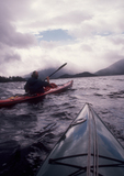 Sea kayakers paddling the Pacific Ocean off Vancouver Island, British Columbia, Canada,