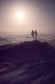 Two wildlife researchers walk into an Arctic, blowing snow, spring windstorm, Prudhoe Bay, North Slope, Beaufort Sea, Alaska, USA,