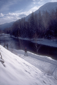 Cross country skiers, Methow Valley Trail System, Okanogan County, Eastern Washington, Washington State, Pacific Northwest, USA 