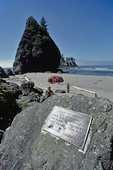 Olympic National Park, Shi Shi Beach, Point of Arches, Washington State, Pacific Northwest, family amidst sea stacks, Pacific Ocean, Olympic Peninsula, Nature Conservancy Preserve was eventually handed over to Olympic National Park.