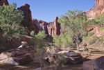 Utah, Coyote Gulch, Grand Gulch Primitive Area, Southwest USA, Bureau of Land Management, (BLM) Glen Canyon National Recreation Area, Red rock formations, hiker in solitude, Maggie Coon, relesed,