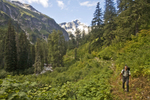 Hiking, Hiker, Little Beaver trail, Mount Whatcom, Picket Range, North Cascades National Park, wilderness, Cascade Mountains, Washington State, Pacific Northwest, United States, Scott McCredie, released,