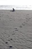 teenager talking on cellphone, California, Pacific coast, wilderness beach, surf, Prairie Creek Redwoods State Park, Humboldt County, California, USA,
