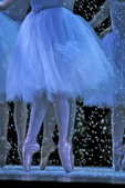 Ballerina, Ballet dancer, Nutcracker Suite, Seattle, Pacific Northwest Ballet, Marion Oliver McCaw Hall; sets by Maurice Sendak, Tchaikovsky, E.T.A. Hoffmann, The Nutcracker and the Mouse King, 2004