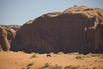 U.S.A., Arizona, Monument Valley, Navajo Tribal Park, red rock, American, desert landscape, horses greazing,