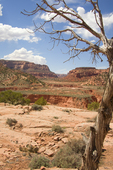 Arizona, Red Rock Road Trip, Highway 160, Navajo Reservation, Navajo Nation, U.S.A., geology, geography, red rock landscape,