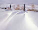 NORTH DAKOTA - Fence in the snow-covered Little Missouri National Grasslands