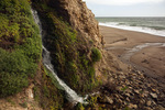 CALIFORNIA - Kelham Beach Waterfall on Drakes Bay in Point Reyes National Seashore.