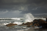 .CALIFORNIA - Stormy day on the Pacific Ocean at the Sanoma Coast.