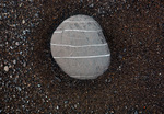 CALIFORNIA - Ringed stone on the Pacific Coast at Black Sands Beach located at the southern end of the Lost Coast near Shelter Bay.