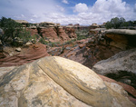 UTAH - Colorful eroded and weathered sandstone along the Chesler Park Trail in the Needles District of Canyonlands National Park.