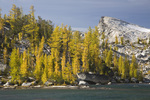 WASHINGTON - Larch trees growing around the shores of Temple Lake and Little Annapurna from the Enchantment Lakes Basin in the Alpine Lakes Wilderness of the Wenatchee National Forest.