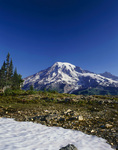 WASHINGTON - Mount Rainier from the Tatoosh Range in Mount Rainier National Park.