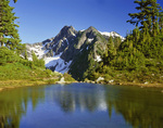 WASHINGTON - Small pond along the Anderson Glacier Trail in Olympic National Park.