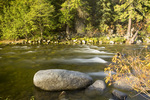 WASHINGTON - Fall time along the banks of Icicle Creek in the Wenatchee National Forest.