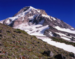 OREGON - Mount Hood from Vista Ridge in the Mount Hood Wilderness area of the Mount Hood National Forest.