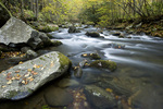 NC00214-00...NORTH CAROLINA -  Autumn along the Oconaluftee River in Great Smoky Mountains National Park.