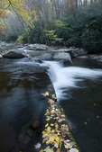 NC00229-00...NORTH CAROLINA - Big Creek in Great Smoky Mountains National Park.
