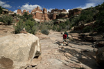 UTAH - Hiker in Elephant Canyon, Needles District of Canyonlands National Park.(MR#K1)