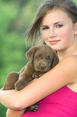 Teenaged girl holding chocolate Labrador retriever puppy