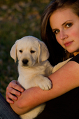 Teenaged girl holding a yellow Labrador retriever puppy