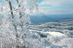Snow and Hoarfrost on Max Patch, Pisgah National Forest, North Carolina, Winter