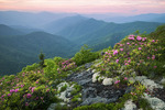 Sunset in the Black Balsam Knob area of the  Blue Ridge Parkway, June