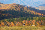 Backpackers on Max Patch, Pisgah National Forest, NC, Autumn, model released