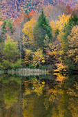 Autumn reflection, Boundary Lake, Cherokee National Forest, Tennessee