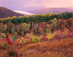 View from Max Patch looking west, Sunrise, Pisgah National Forest, North Carolina, USA, Autumn