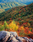 Mountain View of Fall Foliage from White Rock Cliffs on Appalachian Trail, Pisgah National Forest, North Carolina, Autumn