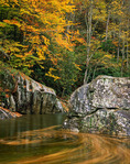 Swirling leaves in the West Fork of the Pigeon River, Haywood County, Pisgah National Forest, NC, Autumn
