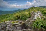 "View from the ""Hangover"" Joyce Kilmer-Slickorck Wilderness, NC, June"