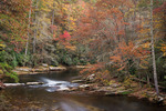 Autumn foliage along the Chattooga National Wild and Scenic River, Sumter NF, SC and Chattahoochee NF, GA