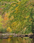 Citico Creek, Cherokee National Forest, TN, Autumn
