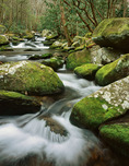 Cosby Creek, Great Smoky Mountains National Park, TN, winter