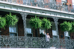 Man watering ferns at Pontalba building in New Orleans