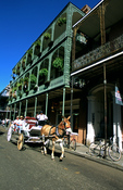 Mule drawn carriage and balconies in New Orleans