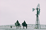 ARGENTINA, Patagonia. Chubut province. Estancia or vast ranch in wintertime. Two gauchos riding in the wildeness near a wind turbine.