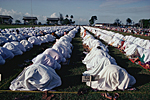 INDONESIA, South Borneo, Kalimantan province, city of Balikpapan :  Muslim women praying on the last day of Ramadan.