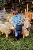 Shepherd Feeding Her Sheep