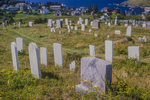 View of Monhegan Island from the Island's Cemetery
